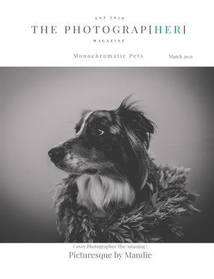 Monochromatic Pets | March 2021