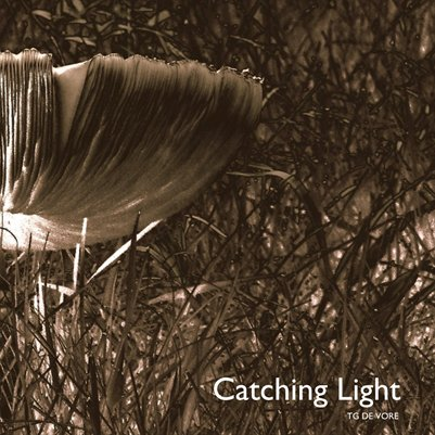 Catching Light