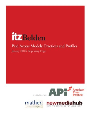 API - ITZBelden Paid Access Insight Report