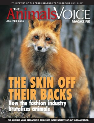 The Skin Off Their Backs: How the Fashion Industry Brutalizes Animals