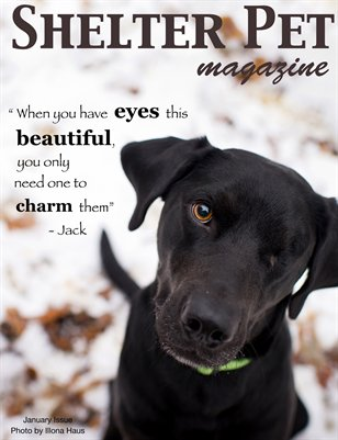 Shelter Pet Magazine- January 2013