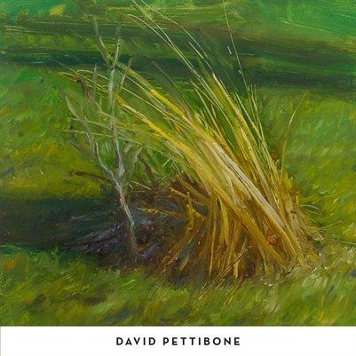 David Pettibone