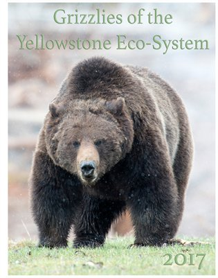 2017 Grizzlies of the Yellowstone Eco System Calendar