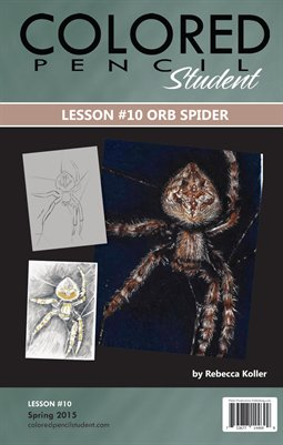 Lesson #10 Orb Spider