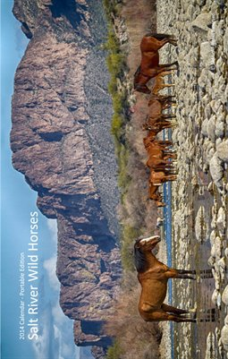 2014 Calendar - Portable Edition - Salt River Wild Horses