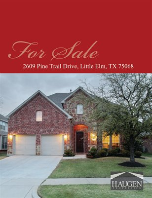 Haugen Properties -  2609 Pine Trail Drive, Little Elm, Texas 75068