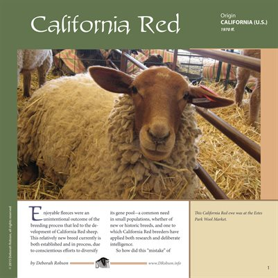 Deborah Robson's Guide to Fiber: California Red