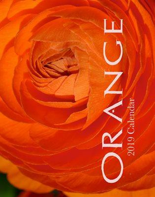 Orange 2019 Calendar