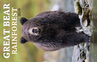 2019 Great Bear Rainforest Calendar