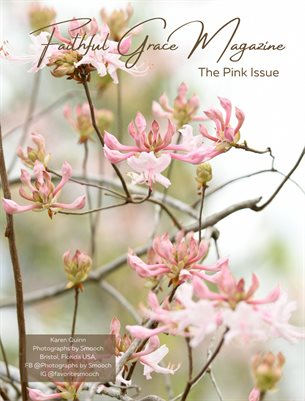 21. The Pink Issue