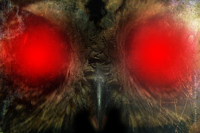 Mothman Eyes