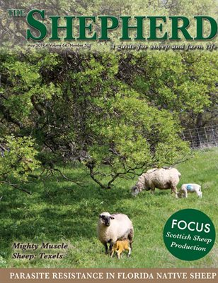 The Shepherd May 2019