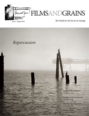 Issue 3- Repercussion