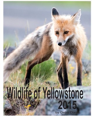 Wildlife of Yellowstone 2015