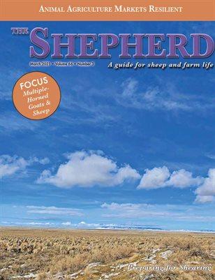 The Shepherd March 2021