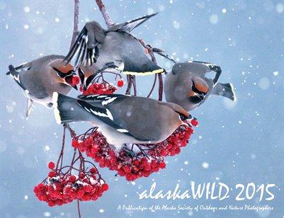 alaskaWILD 2015