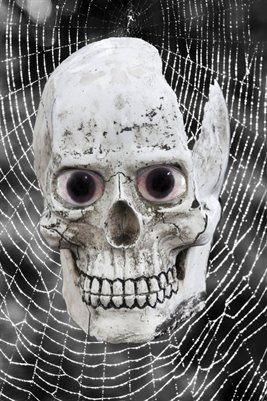 Skull Poster with Web