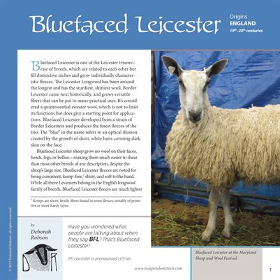 Deborah Robson's Guide to Fiber: Bluefaced Leicester