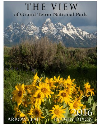 The View of Grand Teton National Park 2016 calendar