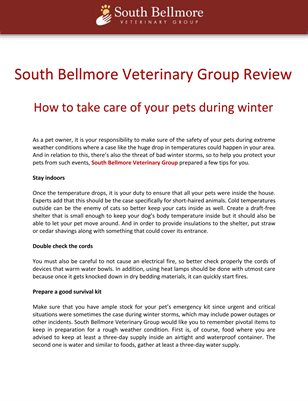 South Bellmore Veterinary Group Review: How to take care of your pets during winter