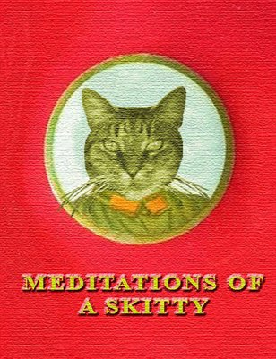 Meditations of a Skitty