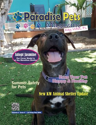 Paradise Pets Magazine, Key West FL Vol. 2 Issue 3