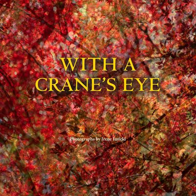 With A Crane's Eye