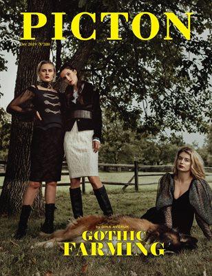 Picton Magazine December 2019 N380 Cover 1