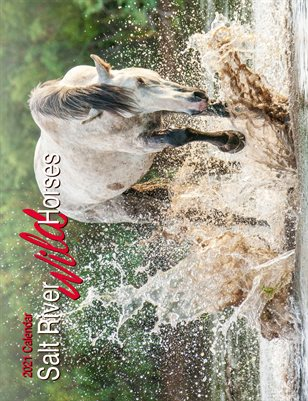 2021 Calendar - Salt River Wild Horses