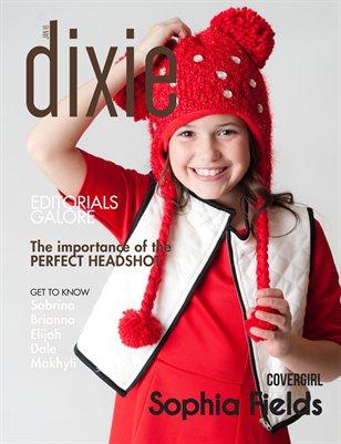 Dixie Magazine January 2017