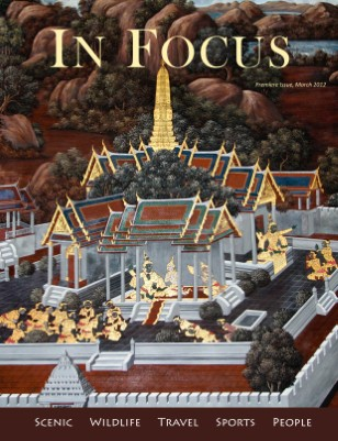 In Focus March 2012 (Premiere Issue)