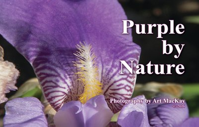 Purple by Nature