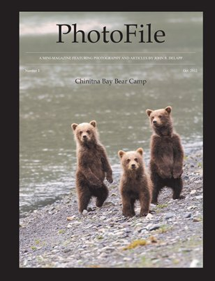 PhotoFile #1 - Chinitna Bay Bear Camp