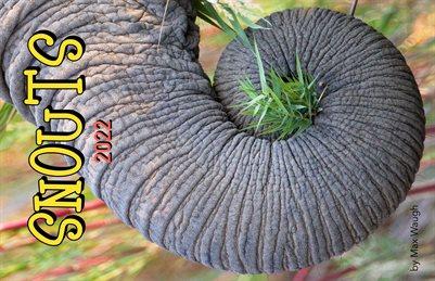 2022 Animal Snouts Calendar