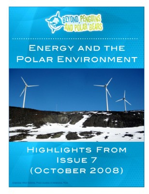 Energy and the Polar Environment