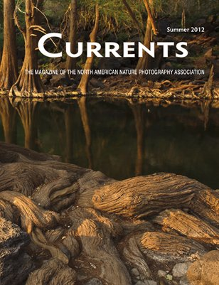 2012 Summer Currents