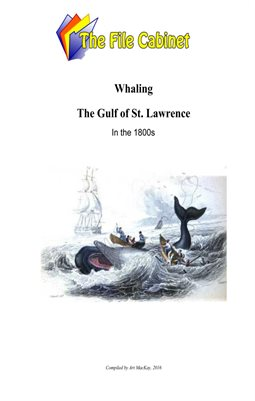 Whaling in the Gulf of St. Lawrence in the 1800s