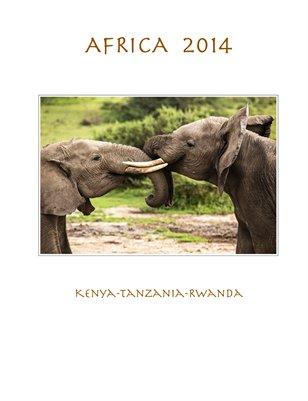 Africa, 2014
