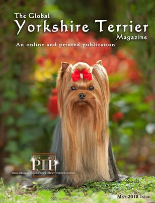 The Global Yorkshire Terrier Magazine -MAY 2018