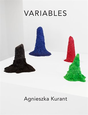 "Agnieszka Kurant ""Variables"" at 'T' Space"