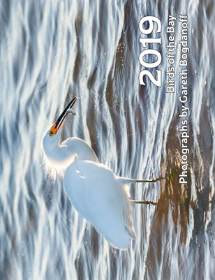 2019 Birds of the Bay Calendar