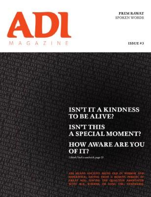 ADI Magazine #3