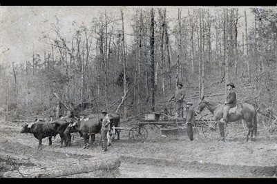 1891 TODD COUNTY, KENTUCKY ROAD CREW