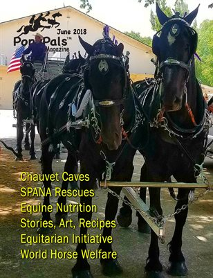 June 2018 Pony Pals Magazine  - Vol.8 #1