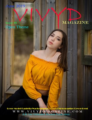 VIVYD Magazine Open Theme Issue #6
