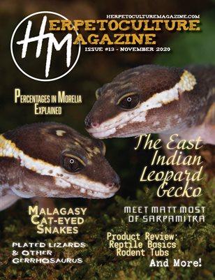 Issue #13 - November 2020