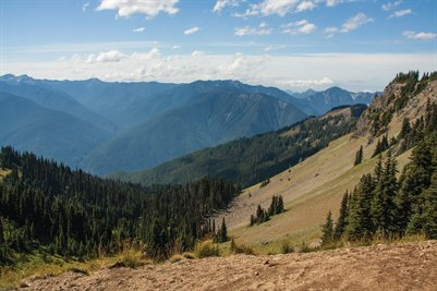 Hurricane Ridge Mountains II (Poster)