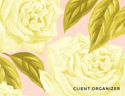 Client Organizer: Spring