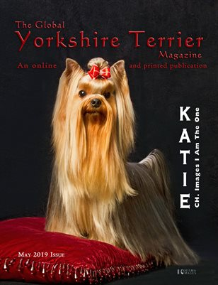 The Global Yorkshire Terrier Magazine - MAY 2019 issue