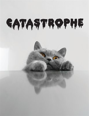 CATASTROPHE Catalogue